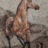 Arte da ucraniana Svetlana Ivanchenko com areia e conchas XI