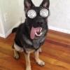 Professor de hipnose!
