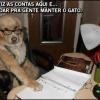 Nas contas do cão...