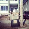 Maddie o cachorro equilibrista IV