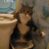 Libra!