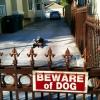 Cuidado com o cão...