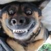 Sorrindo para foto...