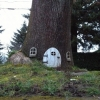 A casa da árvore...