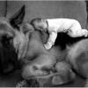Dormindo com o melhor amigo!