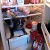 Assaltando a geladeira...