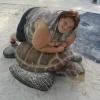 Coitada da tartaruga...