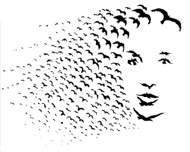 ilusão Aves ou uma mulher?