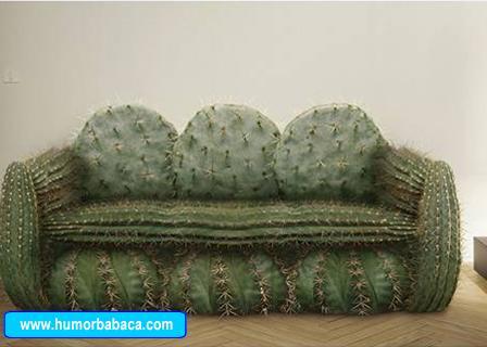 http://www.humorbabaca.com/upload/montagens/montagens_247_Sofa%20de%20espinhos.JPG